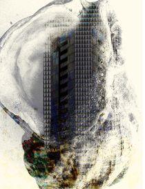 Schneckenhaus von Peter Norden
