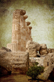 Temple of Heracles von RicardMN Photography