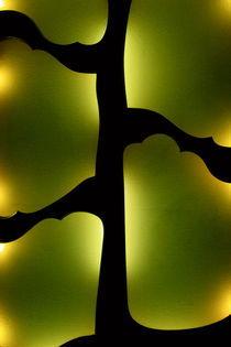 Gaudi Frame by Benjamin Wilkinson