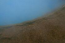 Icelandic hot spring von Benjamin Wilkinson
