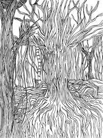Floresta-1