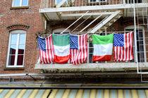 Flags von Ed Rooney