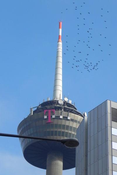 Fernsehturm Köln Höhe