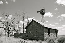 Abandoned Farm in Colorado von Benjamin Wilkinson