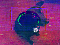 Dogsday-rgb-collage1e