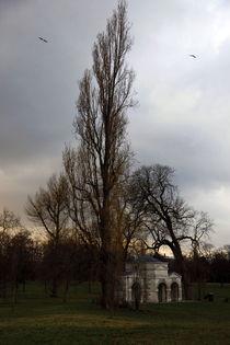 Hyde Park London by Rania chalfoun