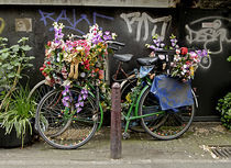 Bicycle and flowers von Ed Rooney
