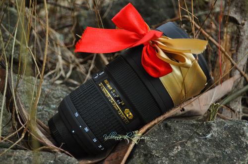 Nikon-dried-leaves-watermarked