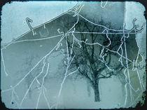 frostige zeiten - rimy times by augenwerk
