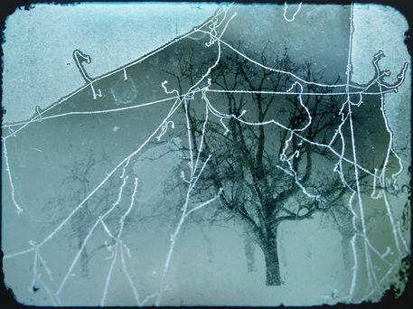 Frostige-zeiten-rimy-times
