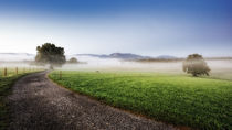 Im Land der Nebel von Ive Völker