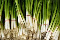 Spring onions von Ed Rooney