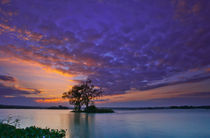 Purple Sky von Thommy Kusbin