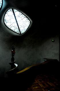 Gaudi's Gesture by Florencia Carolina Schmidt