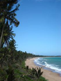 Beach von Renata Machado