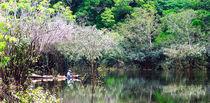 Hombre en canoa en Amazonas Venezolano by Eliana Urdaneta Rodriguez