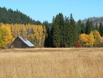 Autumn Comes to the Farm von Jon Mack