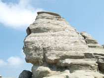 sphinx by Mihail Leonard Bodor