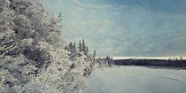 frozen klondike river by Priska  Wettstein