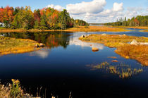 Maine Waterway in Autumn by Betty LaRue