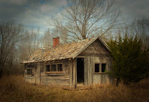 Abandoned House by Betty LaRue