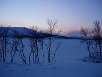 Schneelandschaft in Norwegen von Katy Haecker