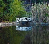 Bridge over Lily Ponds, Hobart Botanic gardens by photography-by-odille