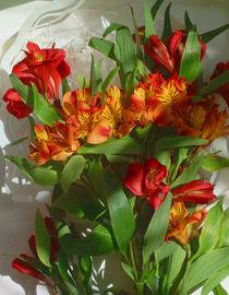 Flowers under glass von carol weinberg