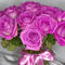 Rosenstrauss-pink