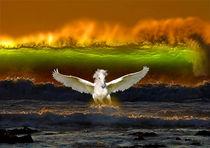 Serie Pegasus Bild 01 von Klaus Lensch