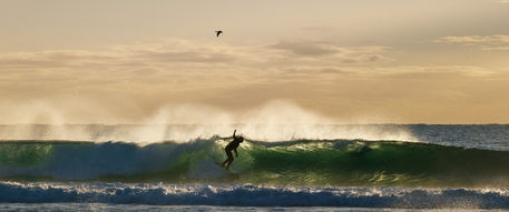 Another-golden-surf-moment-pano-cf037895
