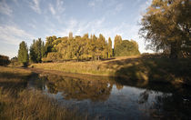 Armidale Creek Bank by photography-by-odille
