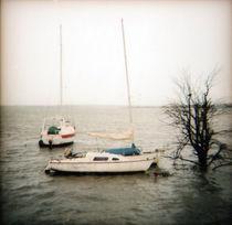 barcos e el río von Sophie Starzenski