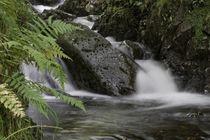 Lakeland Stream von David Robinson