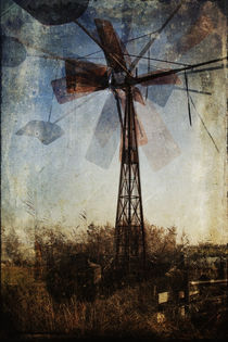 Bosmanmill by Erik Jonker