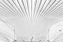 As Time Flies By von Matthias Haker