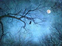 Winternacht by Franziska Rullert
