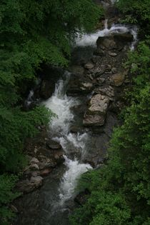 Low Alpine Stream in Summer by David Robinson