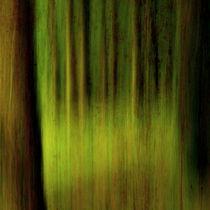 Wald-mit-rosttextur-1