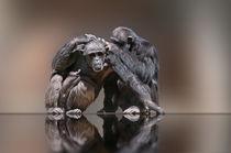 ich glaub mich laust der Affe  von Cornelia Dettmer
