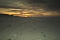 the sky is golden von morningside