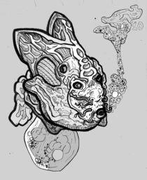 bunny fish von Stephen Huczek