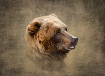 Profile of a Grizzly Bear von Betty LaRue