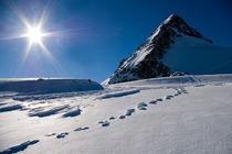 Schritte zum Gipfel von Thomas Mertens