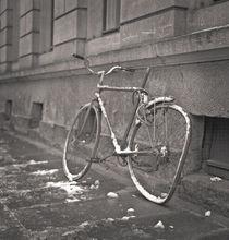 Dresden von Ron Greer