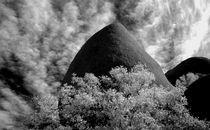 29 PALMS DESERT by Brian  Leng