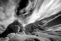 INFRARED BLACK AND WHITE IMAGE 29 PALMS,CALIF. by Brian  Leng
