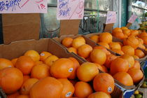 Oranges by Camille Alvarez