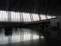 BEIJING AIRPORT by Nara Thada