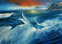 Dolphins von Giora Eshkol